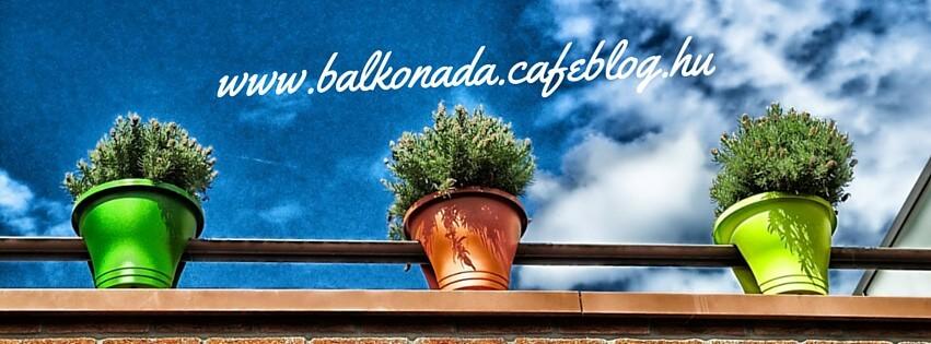 Burjánzó balkonok és kertek (Balkonada) Facebook csoport